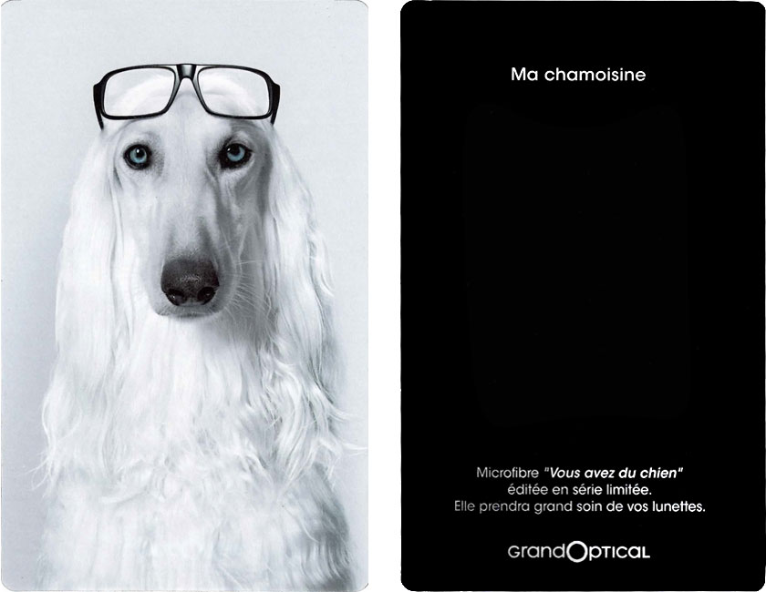 chamoisine grand optical